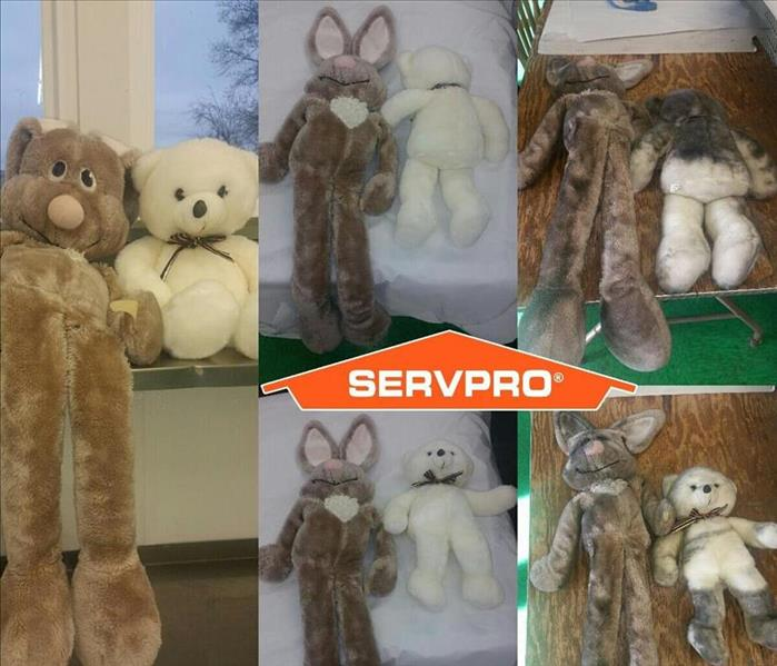 Yes, we even save your stuffed animals!