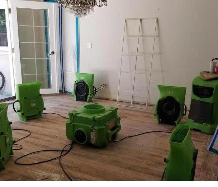 Green drying equipment set up in home